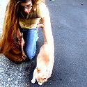 a beautiful girl helps a kitten
